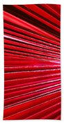Frond Of Red Beach Towel