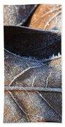 Frost On Oak Leaf Beach Towel