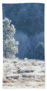 Frosted Morning Beach Towel