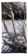 Frosted Trumpets Beach Towel