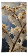 Frosty Dry Wood Aster Beach Towel