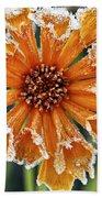 Frosty Flower Beach Towel by Elena Elisseeva