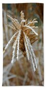 Frosty Fountain Grass Beach Towel
