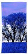 Frosty Trees Beach Towel