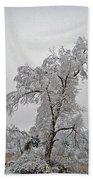 Frozen Tree Beach Towel