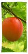 Fruit Plums Red Beach Towel