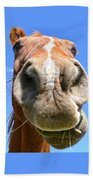 Funny Brown Horse Face Beach Towel by Jennie Marie Schell