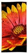 Gaillardia Flower Beach Towel