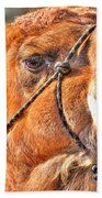 Gangsta Grillin This Camels Chillin Beach Towel