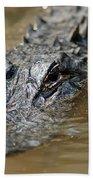 Gator 3 Beach Towel