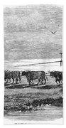 Gauchos, 1858 Beach Towel