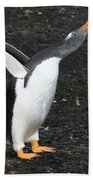 Gentoo Penguin With Something To Say Beach Towel