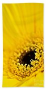 Gerbera Flower Beach Towel