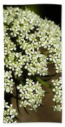 Giant Buckwheat Flower Beach Towel