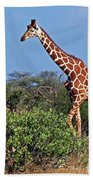 Giraffe Against Blue Sky Beach Towel
