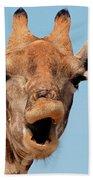 Giraffe Calling Beach Towel