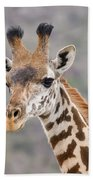 Giraffe Close-up Beach Towel