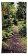 Glanleam, Co Kerry, Ireland Path In The Beach Towel