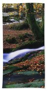 Glenmacnass Waterfall, Co Wicklow Beach Towel