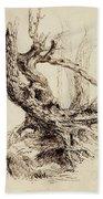 Gnarled Tree Trunk Beach Towel