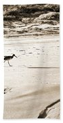 Godwit Beach Towel