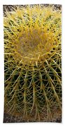Gold Barrel Cactus   No 1 Beach Towel