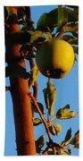 Golden Apples Beach Towel