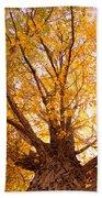 Golden Autumn View Beach Towel