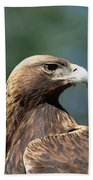 Golden Eagle In Profile Beach Towel