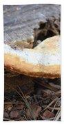 Golden Edged Mushroom Beach Towel