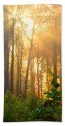 Golden Fog Thru The Trees Beach Towel