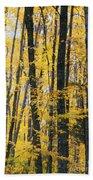 Golden Forest Beach Towel