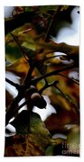 Golden Oak At Nightfall Beach Towel