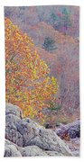 Golden Poplar Among The Rocks At Johnsons Shut Ins State Park Beach Towel