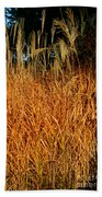 Golden Silver Grass Beach Towel