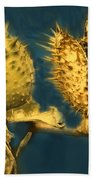 Golden Thistle Beach Towel