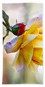Gorgeous Roses Beach Towel