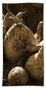Gourds In Sepia Beach Towel