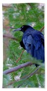 Grackle On A Branch Beach Towel
