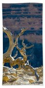 Grand Canyon Dead Tree Beach Towel