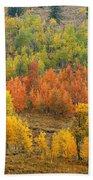 Grand Teton Fall Color Beach Sheet