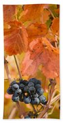 Grapes On The Vine - Vertical Beach Towel