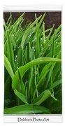 Grassy Drops Beach Towel