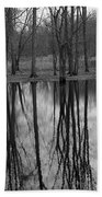 Gray Day Reflections Beach Towel