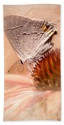 Gray Hairstreak Butterfly Beach Towel