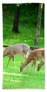 Grazing Doe Beach Towel