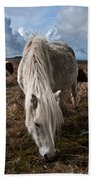 Grazing The Moor Beach Towel