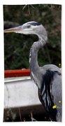 Great Blue Heron - Blue Man Flew Beach Towel