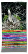 Great Blue Heron Ardea Herodias Nesting Beach Towel