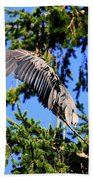 Great Blue Heron Cover Up Beach Towel